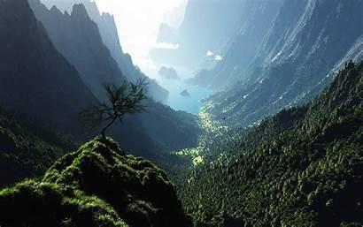 Forest Panorama 4k Desktop Wallpapers