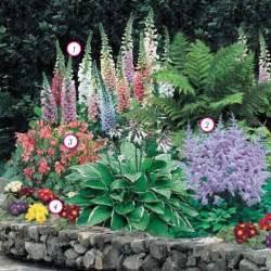 Zone 4 Shade Perennial Garden Ideas