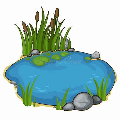Pond Lake Cartoon Reeds Vector Background Clipart