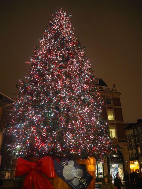 christmas trees  london guide london