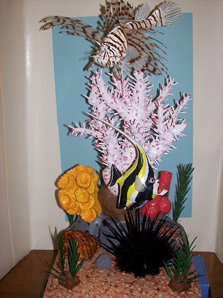 fish carvings woodworking blog  plans