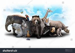Royalty-free A group of animals are grouped together ...
