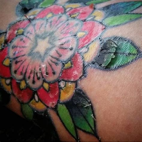 tattoo aftercare ideas  pinterest aftercare