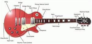 Parts Of Guitars