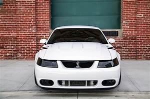 White 2004 Terminator Mustang Cobra cars wallpaper   2048x1360   661998   WallpaperUP