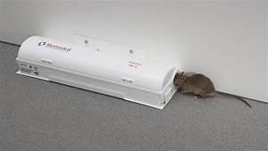 Piege à Rat Efficace : piege a rats et souris tous les fournisseurs piege a rats ~ Dailycaller-alerts.com Idées de Décoration
