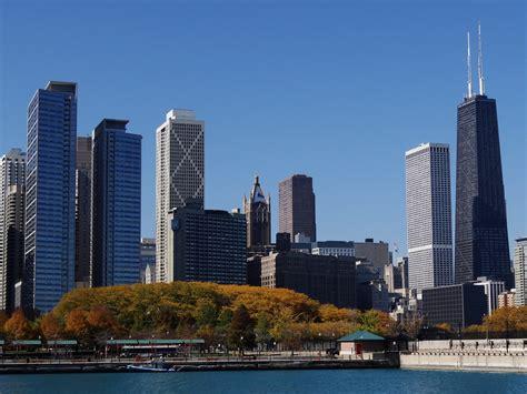 chicago lawmakers   case  bird friendly