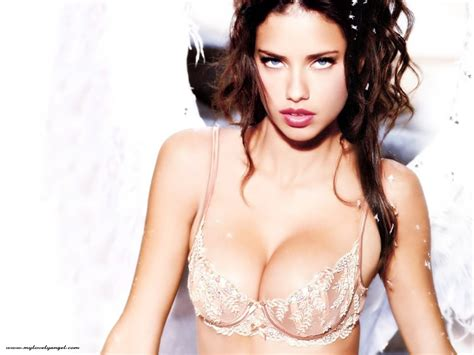 Victoria S Secret Images Adriana Lima Hd Wallpaper And Background Photos