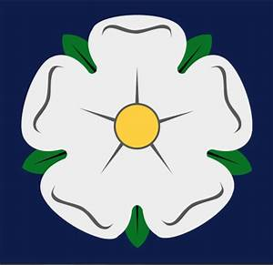 Picture Of White Rose Of Yorkshire
