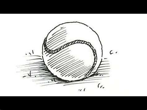 draw  tennis ball shoo rayner author