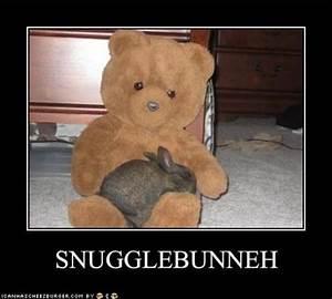 Snuggle Bear Quotes. QuotesGram