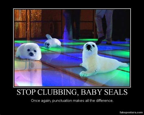 Baby Seal Meme - tee hee i had to post this old baby seal grammar meme just cause it s so darn funny who