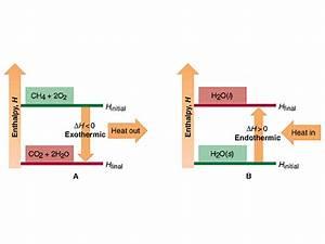 Energy Diagrams For The Transfer Of Internal Energy