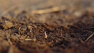How To Cultivate In Different Soil Structures