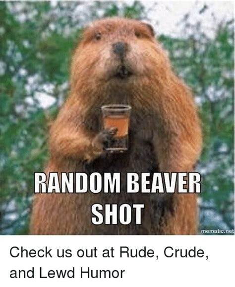 Crude Memes - 25 best memes about random beaver shot random beaver shot memes