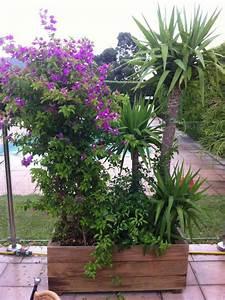 Plantes En Pot Pour Terrasse : plante pour terrasse ma terrasse ~ Dailycaller-alerts.com Idées de Décoration