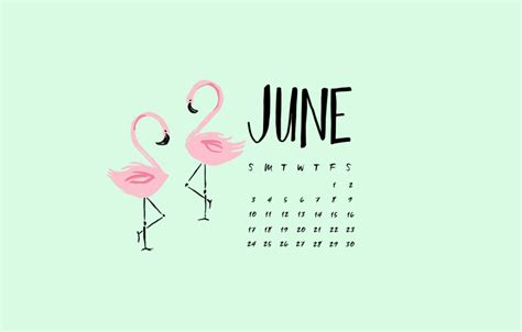 june  desktop calendar wallpaperjpg  pixel