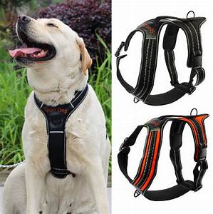 No Pull Dog Harness Vest for Large Medium Small Dogs with ...