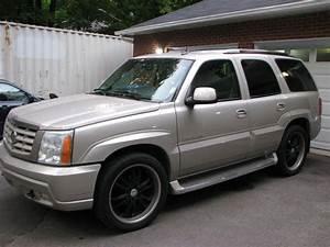 2002 Cadillac Escalade - User Reviews - CarGurus