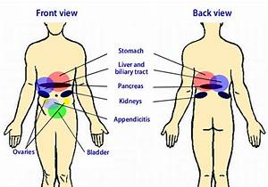Location Of Gallbladder Pain Stomach Pain And Abdominal ...