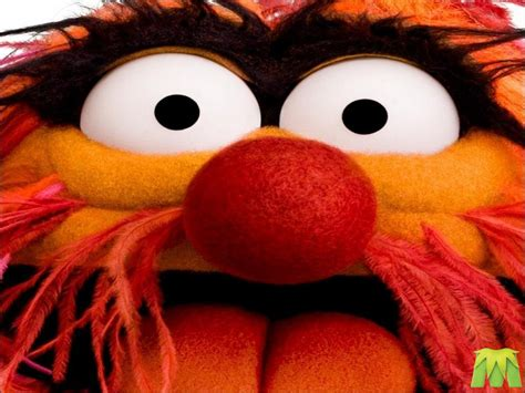 Animal Muppets Wallpaper - the gallery for gt the muppets animal wallpaper