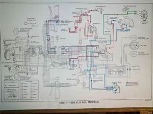 Sportster Wiring Diagram Pictures  Images  U0026 Photos