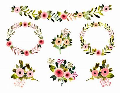 Rustic Clipart Borders Watercolor Floral Flowers Spring