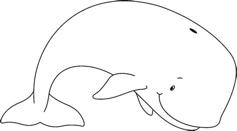 whale template whale outline template