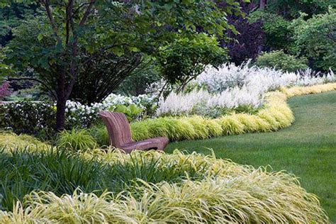 border grasses for landscaping planting design ornamental grass hedges gardens pinterest gardens garden borders and hedges