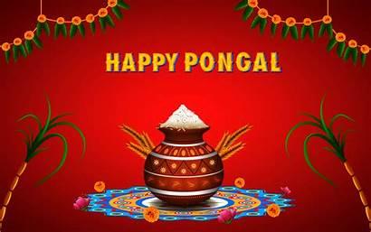 Pongal Wishes Happy Wallpapers Tamil Telugu Hindi