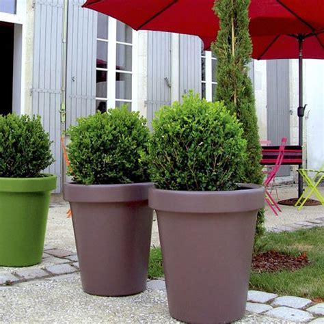 le pot de jardin est devenu le g 233 ant vert de l ext 233 rieur