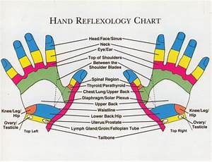 Does Pressure Point Therapy  Reflexology Really Work