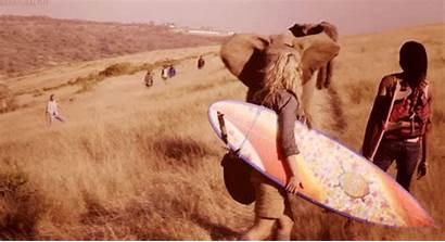 Africa Gifs Travel Animated Animal Animals Elephant