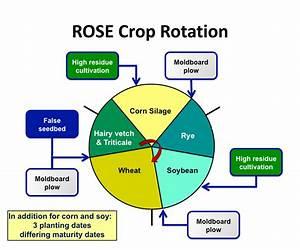 Crop Rotation Diagram  U2014 Untpikapps