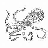 Squid Coloring Giant Pages Octopus Cuttlefish Diagram Drawing Labelled Printable Getdrawings Adults Getcolorings sketch template