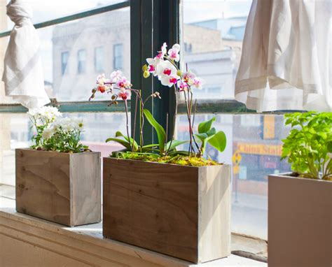 Window Sill Hydroponics by New Stylish And Simple Hydroponic Windowsill Planter