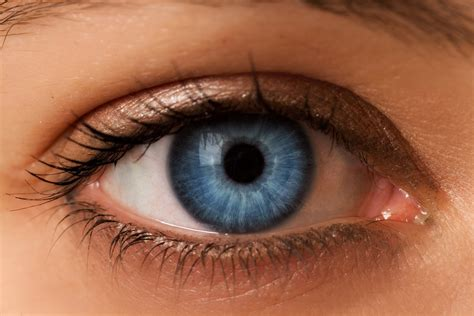 And Blue Eye by Blue Eyed Individuals Are More Likely To Be Alcoholics
