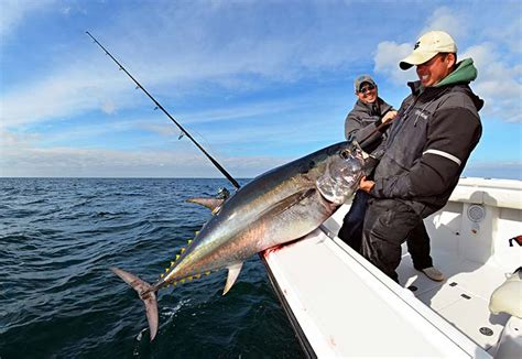 slow  spinning rod tuna   water