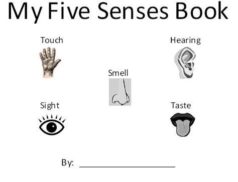 homeschool parent my 5 senses book 119 | 5 senses