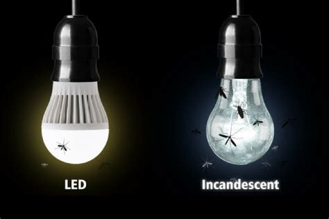 lights that don t attract bugs do led light bulbs attract bugs frys feit www hempzen info
