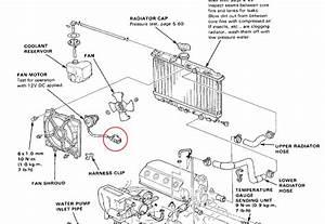 88 Crx Wiring Diagram Fan