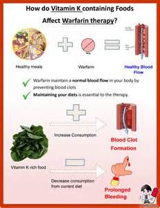 High Vitamin K Foods Coumadin Diet