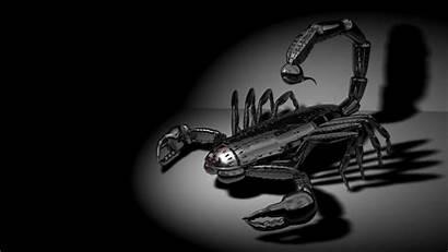 Dark Wallpapers 1080p Negro Scorpion Czarne Fondo