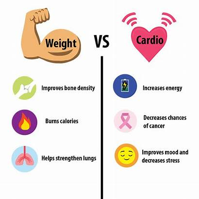 Cardio Weights Training Weight Lifting Fat Methods