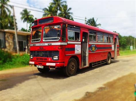 hitchhikers guide    bus  sri lanka yamu
