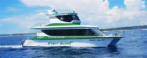 Cheap Boat Sanur To Lembongan by Scoot Fast Cruise Fast Boat From Bali To Lombok Bali To