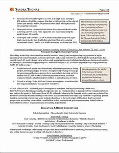 example c level executive resume high tech pg 3 With executive level resume writing services