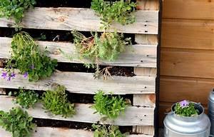 Mur Végétal En Palette : id e r cup un mur v g tal avec une palette en bois blog jardin ~ Melissatoandfro.com Idées de Décoration