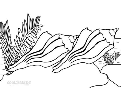 printable seashell coloring pages  kids