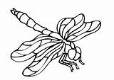 Insects Coloring Pages Simple Children Printable Animals Justcolor sketch template